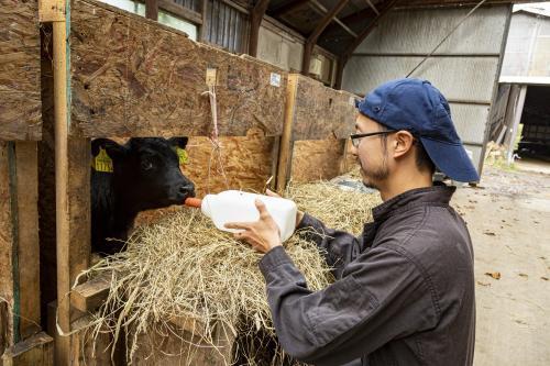 【2022卒】酪農家さんをサポート!酪農ヘルパー募集