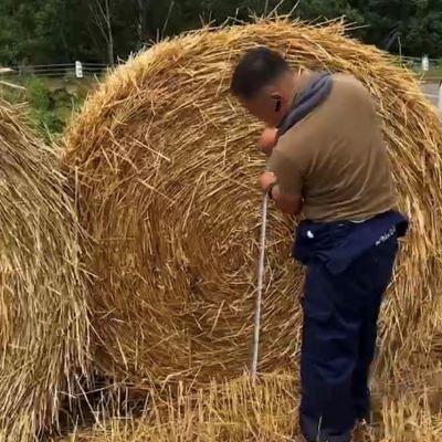 仕入の際は、畑に赴いて大きさや水分をしっかり計測します